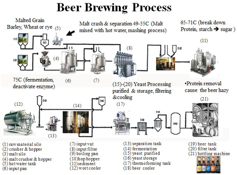 A look at the Beer Brewing Process – Just in time for the ...  |Beer Fermentation Process Diagram